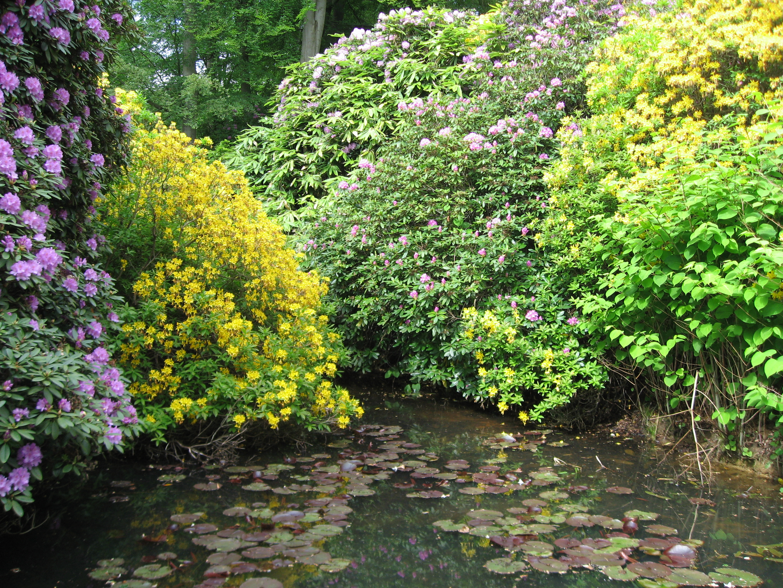 Botaniska trädgårdar  bildtråd   parker, plantskolor och evenemang ...
